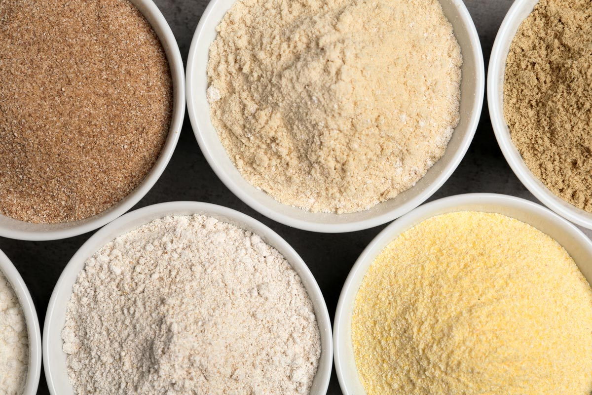 types of protein powders